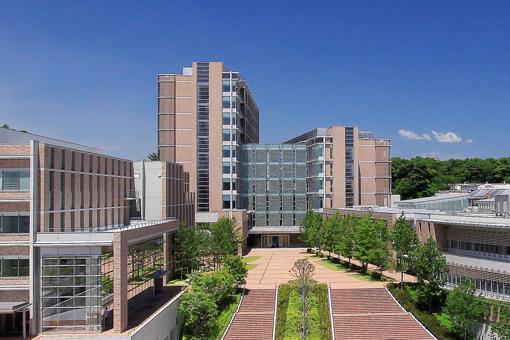 薬科 東北 大学 医科