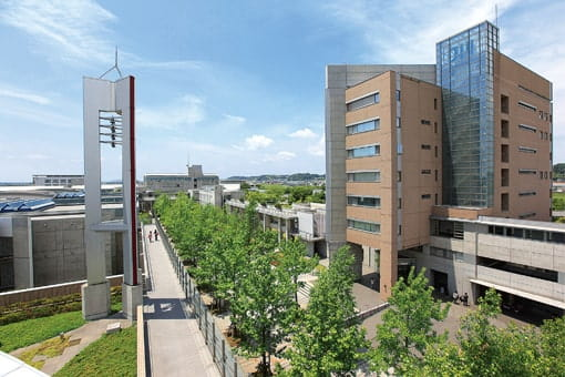 城西 国際 大学 manaba
