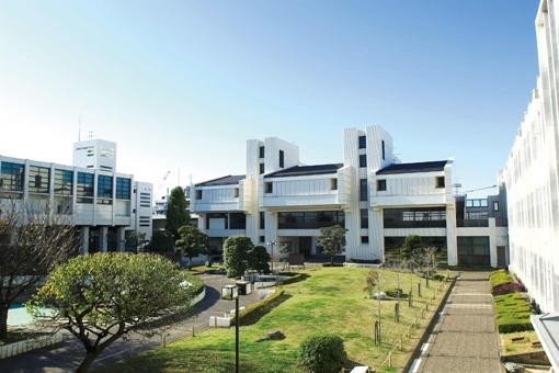 国際都市「横浜」をフィールドに、徹底して実用的な学問を学ぶ