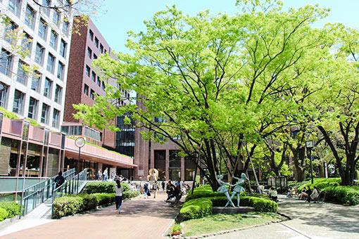 武庫川 女子 大学 偏差 値